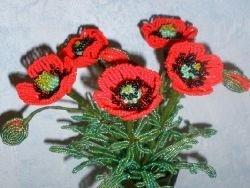Маки из бисера: яркие цветы своими руками (схема и видео)