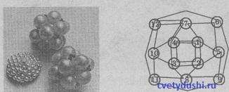 Кошелек из бисера: мастер-класс с пошаговыми фото