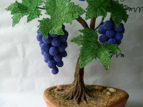 Виноград из бисера в пошаговых уроках бисероплетения с фото и видео материалом