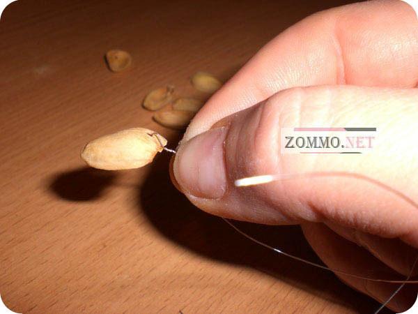 Денежное дерево своими руками из бисера с монетками (видео)
