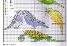 Вышивка крестом птицы по схемам и видео обзор набора