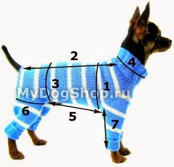 Увлекательное вязание спицами для собак в подробных мастер-классах